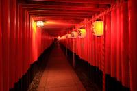 京都府 伏見稲荷大社 本宮祭の千本鳥居