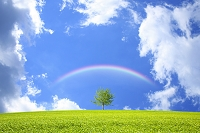 青空と草原と虹