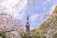 東京都 東京タワー