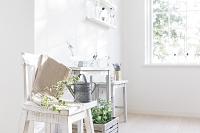 花と植物が飾られた部屋