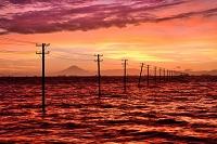 千葉県 木更津市 海に並ぶ電柱と富士山