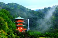 和歌山県 朝霧の青岸渡寺・三重塔と那智の滝