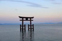 滋賀県 白鬚神社 夕景
