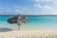 バハマ 砂浜と海