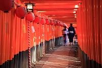 京都府 伏見稲荷大社 本宮祭