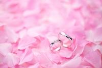 結婚指輪と桜