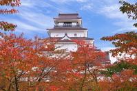福島県 紅葉の鶴ヶ城