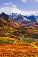 アメリカ合衆国 アラスカ デナリ国立公園