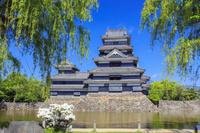 長野県 松本城(国宝)