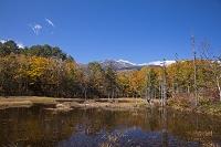 長野県 乗鞍高原 一ノ瀬園地 どじょう池と乗鞍岳