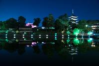 奈良市 興福寺 五重塔 中金堂と猿沢池