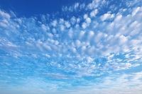 神奈川県 青空と雲