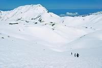 富山県 室堂の雪稜と奥大日岳