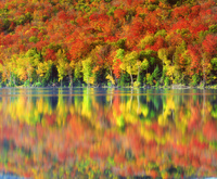 ニューヨーク 紅葉の反射する秋の湖