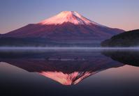 山梨県 山中湖村 赤富士と山中湖