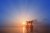 鳥居と朝日