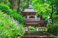 神奈川県 鎌倉 浄智寺