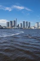 豊洲ぐるり公園から望む晴海埠頭と周辺のビル群