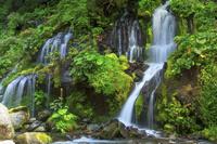 山梨県 川俣川渓谷 土竜の滝と新緑