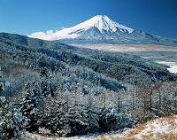 山梨県 忍野雪景