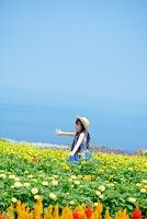お花畑と日本人の女の子