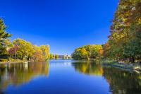 東京都 石神井公園の紅葉と石神井池