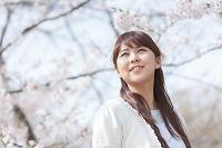 桜の花見をする笑顔の日本人女性