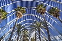 バレンシア 芸術科学都市