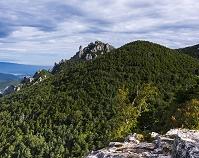 山梨県 鷹見岩から瑞牆山