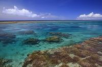 沖縄県 宮古の珊瑚礁の海