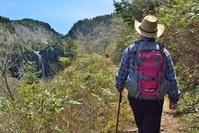 新緑と滝の渓谷を歩く
