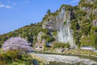 大分県 サクラ咲く耶馬渓 山国川と競秀峰と青の洞門