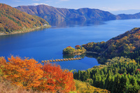 滋賀県 紅葉の月出峠より琵琶湖 奥琵琶湖パークウェイ
