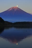 静岡県 田貫湖から見る夕暮れのパール富士