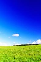 北海道 日高地方のなだらかな草原の丘