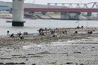 大潮で貝を取る人たち