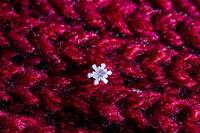 北海道 東川町 手袋についた雪の結晶