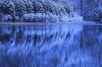 北海道 新雪のオンネトー湖畔
