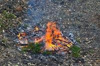 千葉県 焚き火
