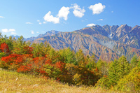 長野県 岩岳から五竜岳(中央奥)と唐松岳(右)