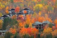 カナダ ローレンシャン高原の紅葉と民家
