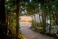 沖縄県 本部町 備瀬のフクギ並木の夕日