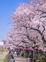 東京都 隅田公園