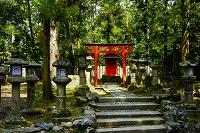 奈良県 春日大社末社の壷神神社