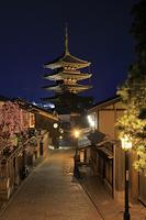 京都府 枝垂れ桜咲く夜の八坂道の家並みと八坂の塔