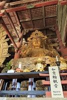 奈良県 奈良市 東大寺 大仏殿 観音像