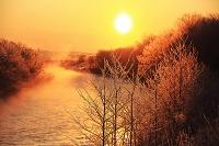 北海道 日の出と霧氷の釧路川