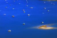 徳島県 ウチノ海と釣り用の筏