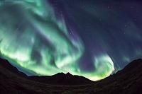 カナダ ツンドラを照らすオーロラ