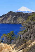 静岡県 黄金崎海岸から見る富士山